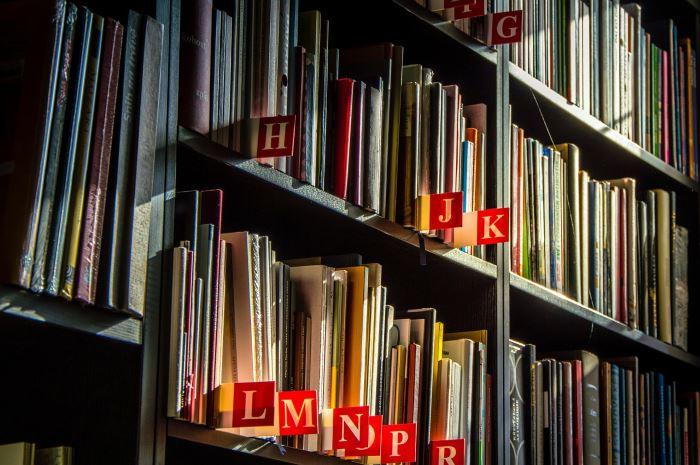 Biblioteka Starachowice: Międzynarodowa Biblioteka Młodzieżowa