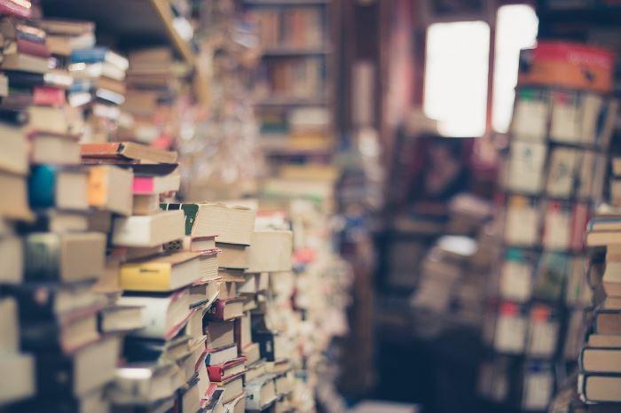 """Biblioteka Starachowice: Adaptacje powieści """"Król"""" i """"Ukryta sieć"""""""