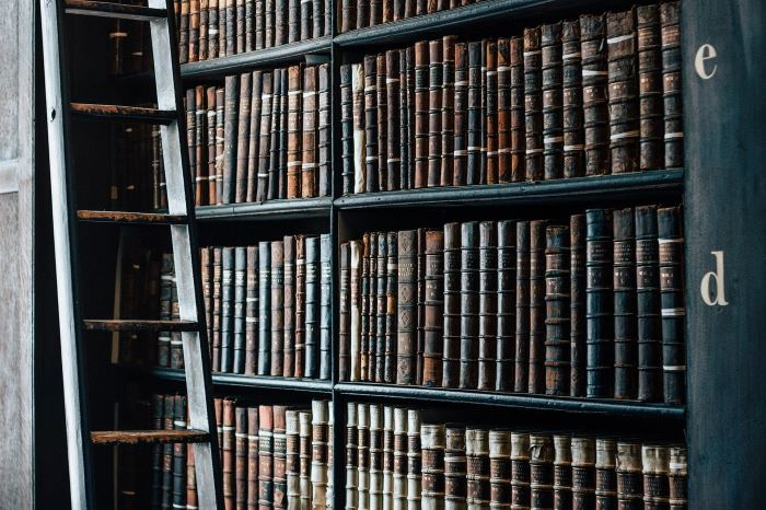 Biblioteka Starachowice: Napisz list do Plastusia ????✍️